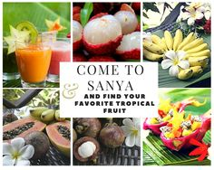 Come to Sanya and find your favorite tropical fruit. #SanyaPhotocollage…