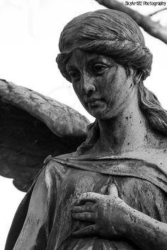 At Hauptfriedhof Trier.