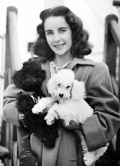 Elizabeth Taylor and her poodles. Of course she had a Poodle! Elizabeth Taylor, Hollywood Stars, Classic Hollywood, Old Hollywood, Hollywood Glamour, Hollywood Actresses, Photo Vintage, Vintage Dog, Edward Wilding