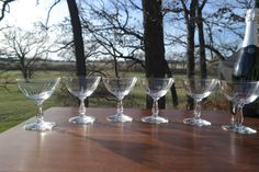 STUNNING Vintage Etched Champagne Coupe by Antiquevintagefind