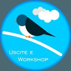 Uscite e Workshop di Birdwatching
