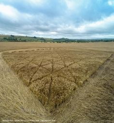 Crop Circle at Chilcomb Ranges, Nr Winchester, Hampshire. Reported   3rd August 2016