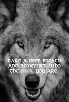 Take A Deep Breath And Remember Who The **** You Are - Wolf Custom Canvas Wrap, Wall Art Personaliz Wolf Pack Quotes, Lone Wolf Quotes, Wolves And Women, Alpha Wolf, Timberwolf, Wolf Spirit Animal, Wolf Photos, Wolf Wallpaper, Just For You