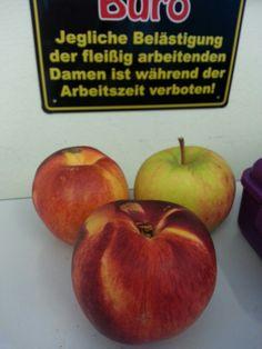 Obst im Büro * Jammy*