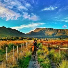 Some beautiful paths can't be discovered without getting lost  #bazbus #explore #southafrica #capetown #horseriding #nordhoek  #travel #wanderlust #instatravel #seetheworld #travelgram