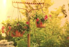 Repurposed Rake Plant Holder - Reuse an old garden tool as a practical and quirky vertical garden stand for hanging baskets to grow more in a small space. Makes a creative garden feature & puts plants in easy reach. More vertical garden ideas @ http://themicrogardener.com/add-space-with-creative-vertical-gardens-part-1/ | The Micro Gardener