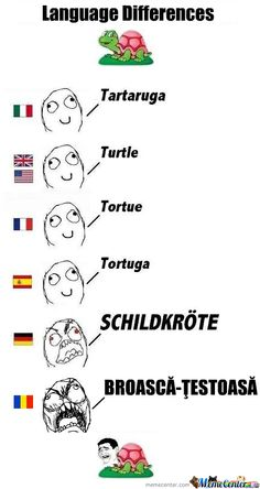 I really want to learn German!