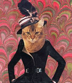fashion cat in an elegant hat, done in time for Hallowe'en 2014