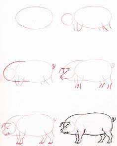 Hoe teken ik een varken