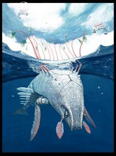 colossal aquatic female - tiny airborne male by *Banvivirie on deviantART