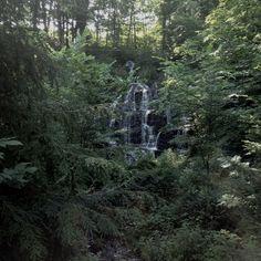 Western Massachusetts stream