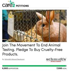 Did you know that animals are still being used to test cosmetics in the United States? Rest assured, Schmidt's is committed and will never test our products on innocent creatures. Want to learn more? Check the link in our profile!