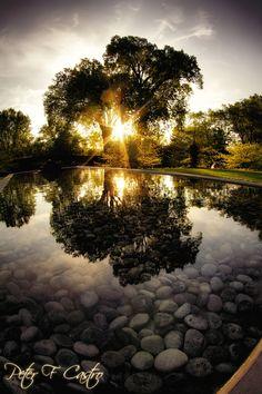 Reflecting Pool Sunset  Thai Pavilion @Olbrich Gardens Madison, WI 5.9.12