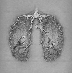 bird, lungs, and art image