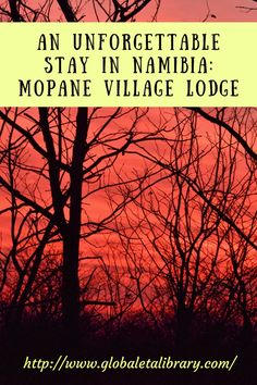 During our recent trip to Namibia, we were lucky to stay in a number of fantastic places but one of our top two was Mopane Village Lodge Etosha. Uganda Travel, Africa Travel, Travel Around The World, Around The Worlds, Africa Destinations, Travel Reviews, Travel Couple, Family Travel, Ultimate Travel