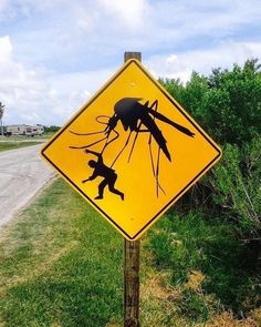 'Meanwhile in Australia' Funny Memes Of All Time Slydor - Your Daily Dose Of Fun. Australian Memes, Aussie Memes, Meanwhile In Australia, Funny Road Signs, Australia Funny, Aussie Australia, Australia Beach, Bizarre, New Orleans