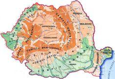 Carpaţii Orientali Carpaţii Orientali unt cuprinşi între graniţa cu Ucraina (în nord), Depresiunea Colinară a Transilvaniei şi Dealurile de Vest şi Câmpia de Vest (în vest), Subcarpaţii de Curbură şi Valea Prahovei (în sud), Podişul Moldovei şi Subcarpaţii Moldovei (în est). ...