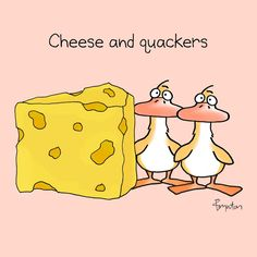 Yesterday was National Cheese Day. Cute Puns, Funny Puns, Funny Quotes, Funny Stuff, Hilarious, Corny Jokes, Cheese Day, Cheese Puns, Sandra Boynton