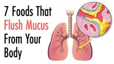 7 Foods That Flush Mucus From Your Body ! 7 Foods That Flush Mucus From Your Body ! A persistent cough and a constantly blocked nose indicate an excess of mucus in the body. Mucus is important in … source Calendula Benefits, Matcha Benefits, Coconut Health Benefits, Getting Rid Of Mucus, Blocked Nose, Persistent Cough, Tomato Nutrition, Nutrition Store, Natural Antibiotics