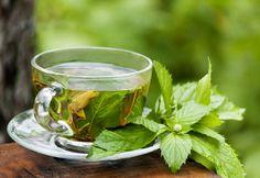Iaso Tea is like a white tea, a green tea, a weight loss tea, and a great tasting herbal tea all in one. Iaso Tea is Certified Organic. Healing Herbs, Medicinal Herbs, Herbal Remedies, Natural Remedies, Snoring Remedies, Best Green Tea, Green Teas, Green Tea Benefits, Peppermint Tea