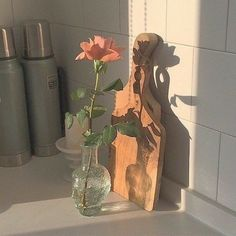Ideas for gifts photography holiday Classy Aesthetic, Beige Aesthetic, Flower Aesthetic, Aesthetic Photo, Aesthetic Pictures, Kpop Aesthetic, Pretty Flowers, Flowers Vase, Picture Wall
