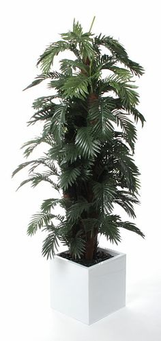 Artificial 7ft Areca Palm Tree (P046B) from Artplants.co.uk #palm #palmtree #artificialtree #artificialplant #houseplant