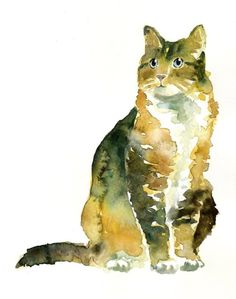 Looks like Phee!! Well, a thin version of Phee. :)  Watercolour cat.  (Source: oceanicities)