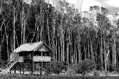 Casa sobre palafitas na Ilha de Marajó, no estado do Pará, Brasil.  Fotografia: Gus Valentim no Flickr.
