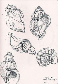 beautiful fine line pen drawings of shells by my friend @Alice Du Port