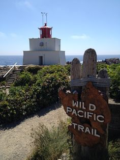 The most beautiful trail along the ocean is in Uclulet, British Columbia on Vancouver Island