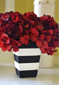 Black and White Planters – DIY Stripes... Simple and stunning