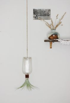 Hanging Bottle Vase  I can think of other uses too!