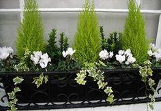 Des idées de compositions hivernales originales et stylées pour profiter d'une fenêtre fleurie ou d'un balcon en fleurs malgré le froid