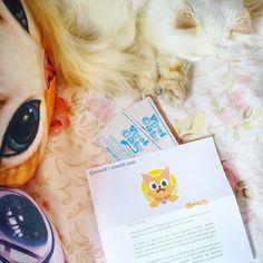 #ChegouNOeiEutil, a #Hashcat nos convidou para assistirmos ao filme #VireiUmGato! O filme conta a história de um empresário que, misteriosamente, fica preso no corpo do gatinho da família. 😸  Para quem não conhece, o Hashcat é o Instagram para quem gosta de gatos, o aplicativo combina rede social, jogos e incentivo a a doação de gatos, é só procurar no iOS ou Android pelo nome ou acessar: www.hashcat.com.br!  Ah, em breve os cães também ganharão a sua versão #Hashdog!  #eiEutil #Gatos #Gato…