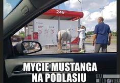 Beka z Człowieka - Strona 3 z 107 - Wtf Funny, Funny Memes, Smile Everyday, Pokemon, South Park, Stranger Things, Haha, Reaction Pictures, Wallpapers
