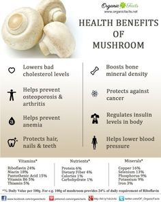 Cholesterol Cure - Health benefits of mushrooms include their ability to lower bad cholesterol levels (LDL) and raise good cholesterol levels (HDL), which protects heart health and reduces blood pressure. - The One Food Cholesterol Cure Health Benefits Of Mushrooms, Mushroom Benefits, Nutrients In Mushrooms, Nutritional Value Of Mushrooms, Healthy Cholesterol Levels, Cholesterol Symptoms, Blood Pressure Remedies, Mushrooms, Gastronomia
