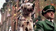 budweiser puppy commercial - YouTube