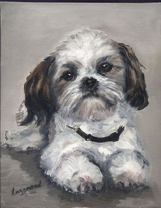 Shih Tzu Dog  Original Oil Painting 10x8 inches Oil on board