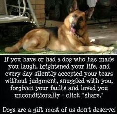 I will always cherish my doggies
