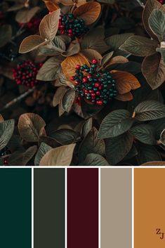 Best color schemes, color combinations, paint colors for home, house colors Color Schemes Colour Palettes, Fall Color Palette, Colour Pallette, Color Combos, Fall Color Schemes, Rustic Color Palettes, Colors Of Autumn, Wedding Colour Palettes, Orange Color Palettes