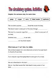 english teaching worksheets internal organs life skills. Black Bedroom Furniture Sets. Home Design Ideas