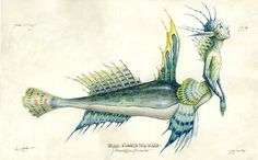 The Spiderwick Chronicles - Blue-Finned Seamaid