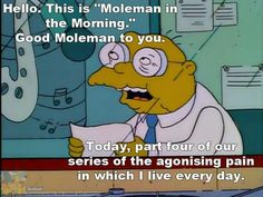 The Simpsons ~ Moleman