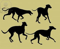 Silhouettes Of Greyhounds Royalty Free Cliparts, Vectors, And Stock Illustration. Image 9658179.