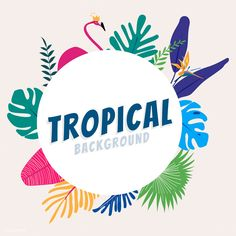 Free and Premium jungle images, vectors and psd mockups Tropical Background, Leaf Background, Beige Background, Tropical Frames, Free Illustrations, Flower Illustrations, Free Vector Illustration, Tropical Design, Pink Abstract