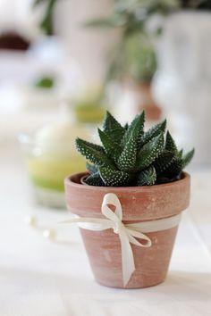 Hochzeit im mediterranen Flair mit Aloe-Pflänzchen in Terracotta-Töpfchen - www.tischleinschmueckdich.de