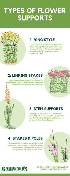 Cut Flower Garden, Flower Farm, Farm Gardens, Outdoor Gardens, Small Space Gardening, Flowering Vines, Garden Care, Lawn And Garden, Front Yard Landscaping