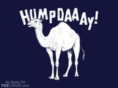 Its Hump Day. Let PrimeSource help you get over that hump and get a new job! Come on down and see us today. New Funny Memes, Funny Quotes For Teens, Funny Texts, Funny Stuff, Funny Sayings, Funny Babies, Funny Kids, Hump Day Camel, Wednesday Hump Day
