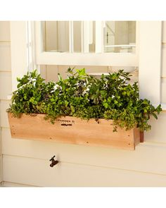 Williams-sonoma Farmer D Cedar Window Box From Williams-sonoma