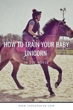 Baby Unicorn, How To Train Your, Horse Care, Equestrian, Training, Social Media, Horses, Group, Blog